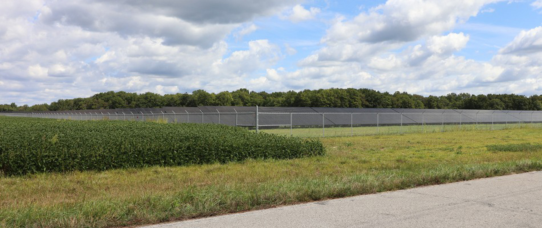 Street view of a solar farm behind a fence with grass.